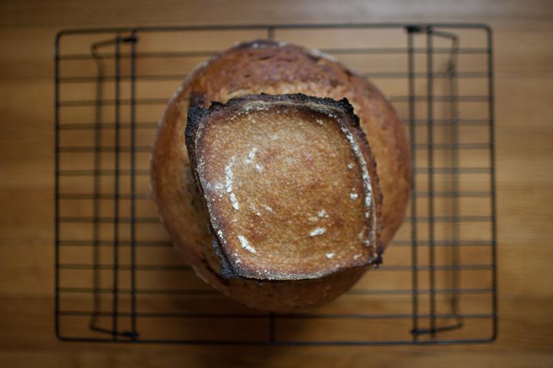 30% rye 10% spelt sourdough loaf, top view