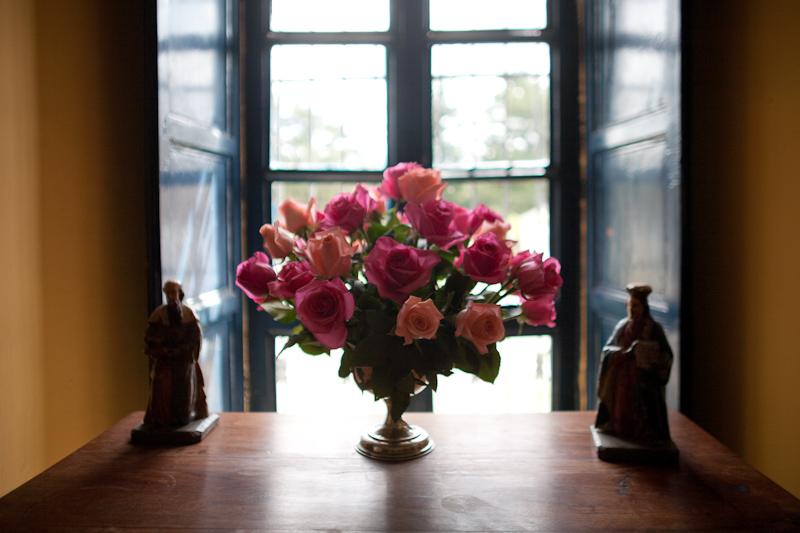 hacienda zuleta roses